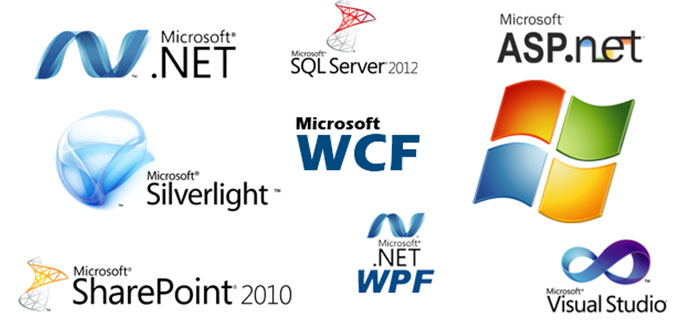 Microsoft .NET Developers